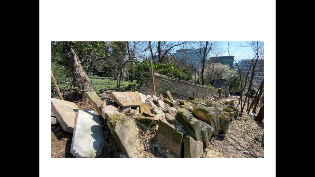 Szenzáció! 300 zsidó sírkövet találtak a pozsonyi susnyásban