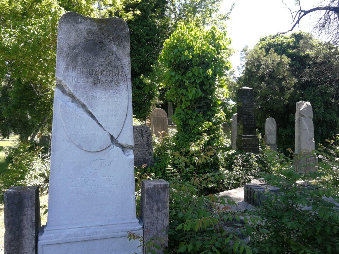 Kisteleken is talált földalatti sírokat a Mazsök temetővizsgáló talajradarja – VIDEÓ